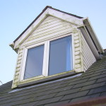 Algae-covered dormer window before cleaning
