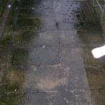 Concrete path prior to pressure washing